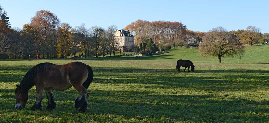 Chateau de Lévinhac - Saint-Côme-d'Olt en Aveyron